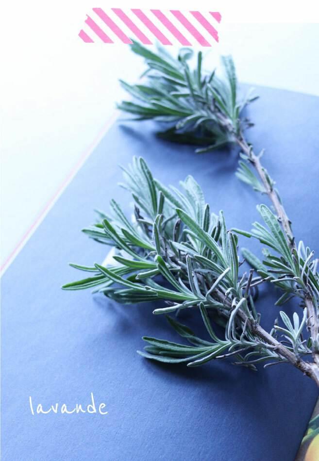 papier crush écologique lavande