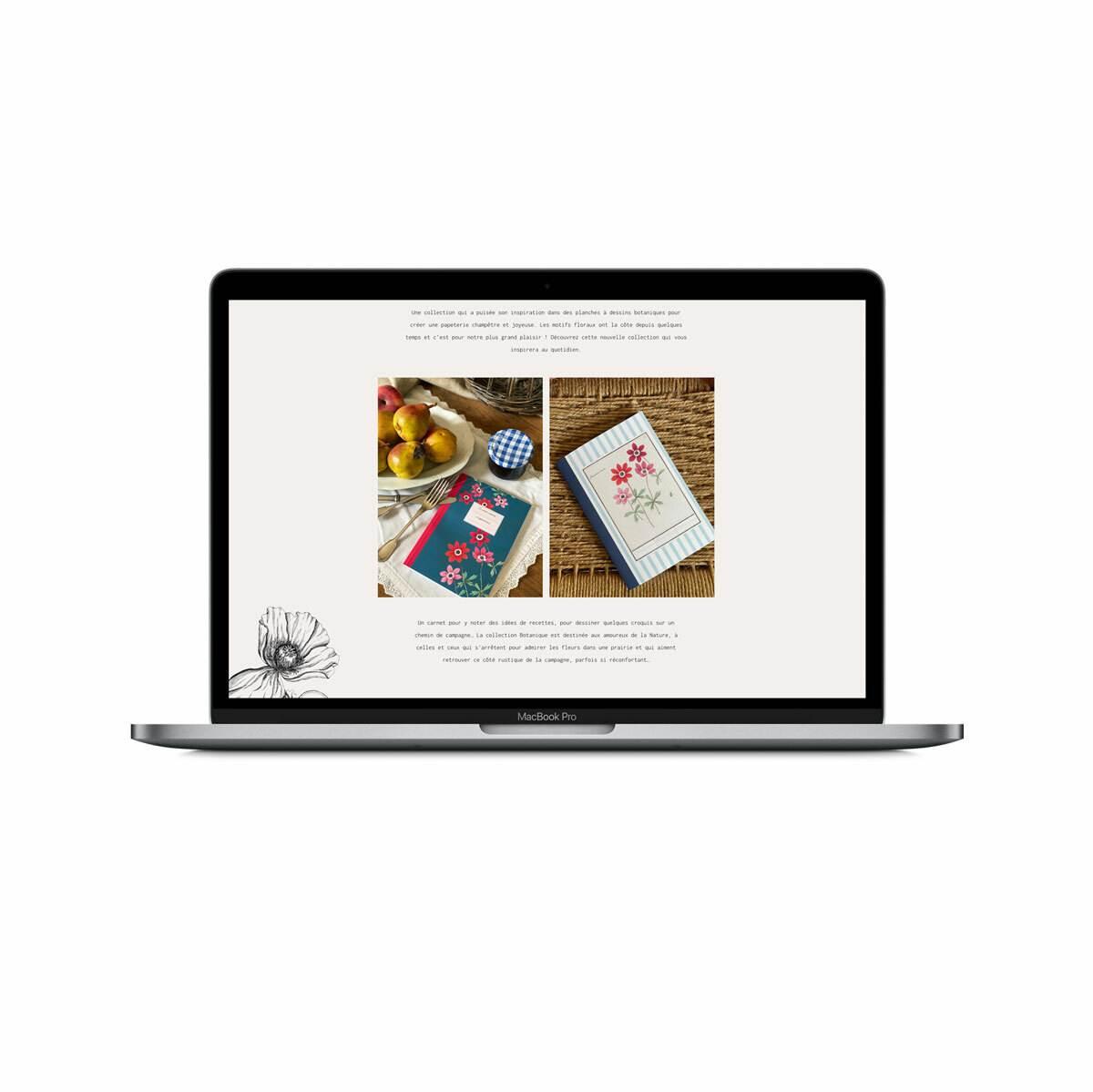 site-web-design-grafik-plus